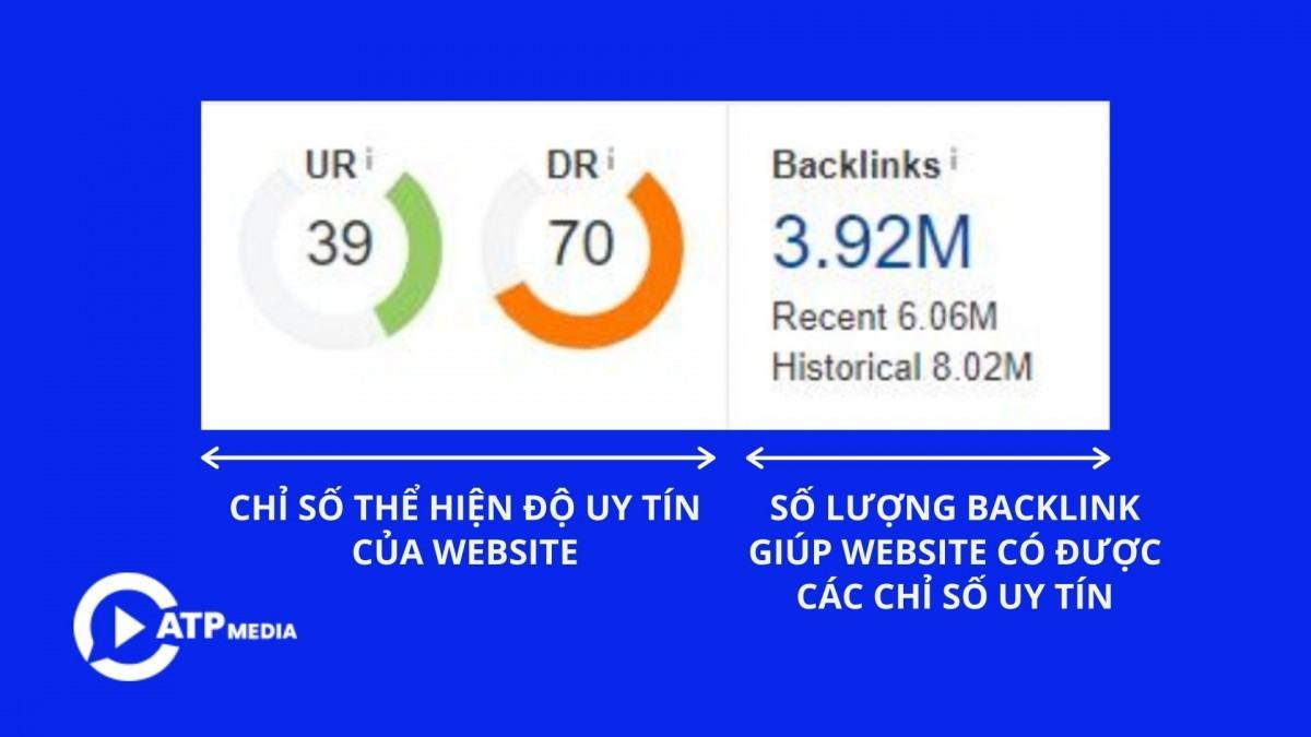 Cung cáp backlink từ dịch vụ chăm sóc website