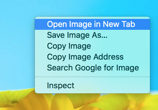 Cách chuyển hình ảnh Facebook và Instagram thành ASCII - image Open-image-in-New-Tab on https://atpsoftware.vn