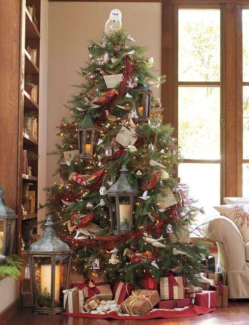 cay thong - Kinh doanh gì lãi khủng mùa Noel ?