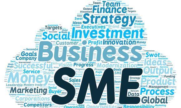 sách 113 - SMEs học được gì từ chiến lược kinh doanh của FMCG