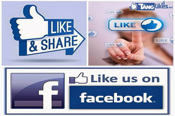reach-la-gi-va-reach-facebook-co-tac-dung-gi