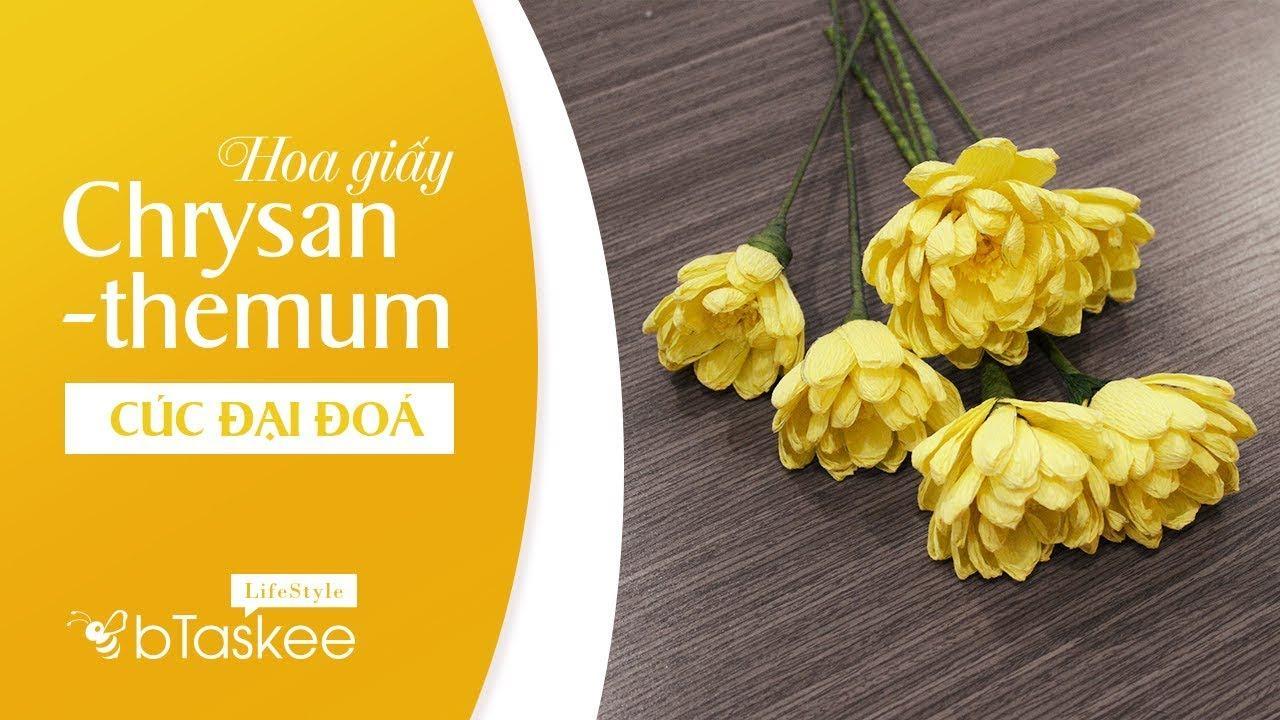Cúc đại đóa là loài hoa phổ biến trong dịp năm mới