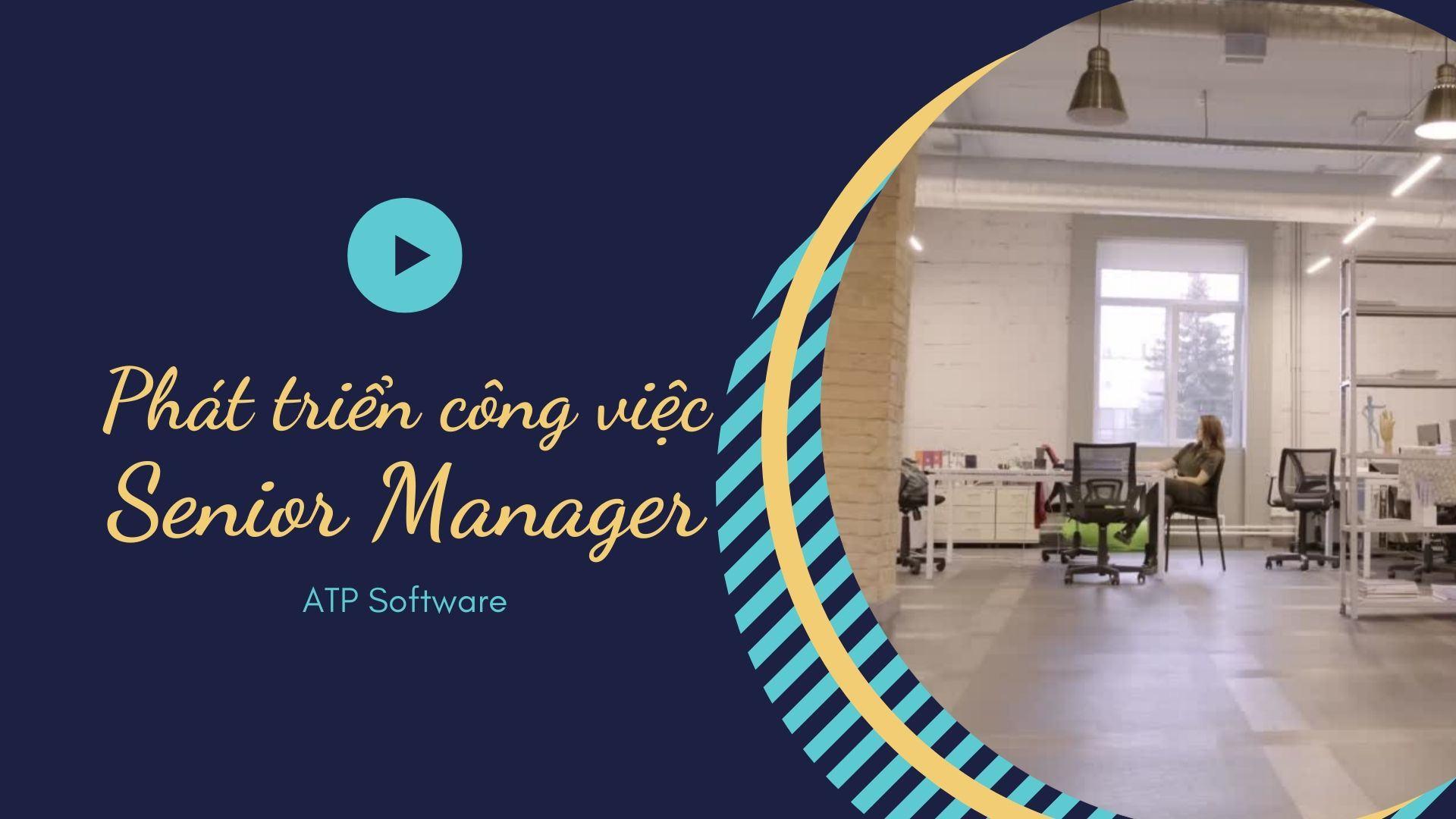 Yêu cầu đối với Senior Manager