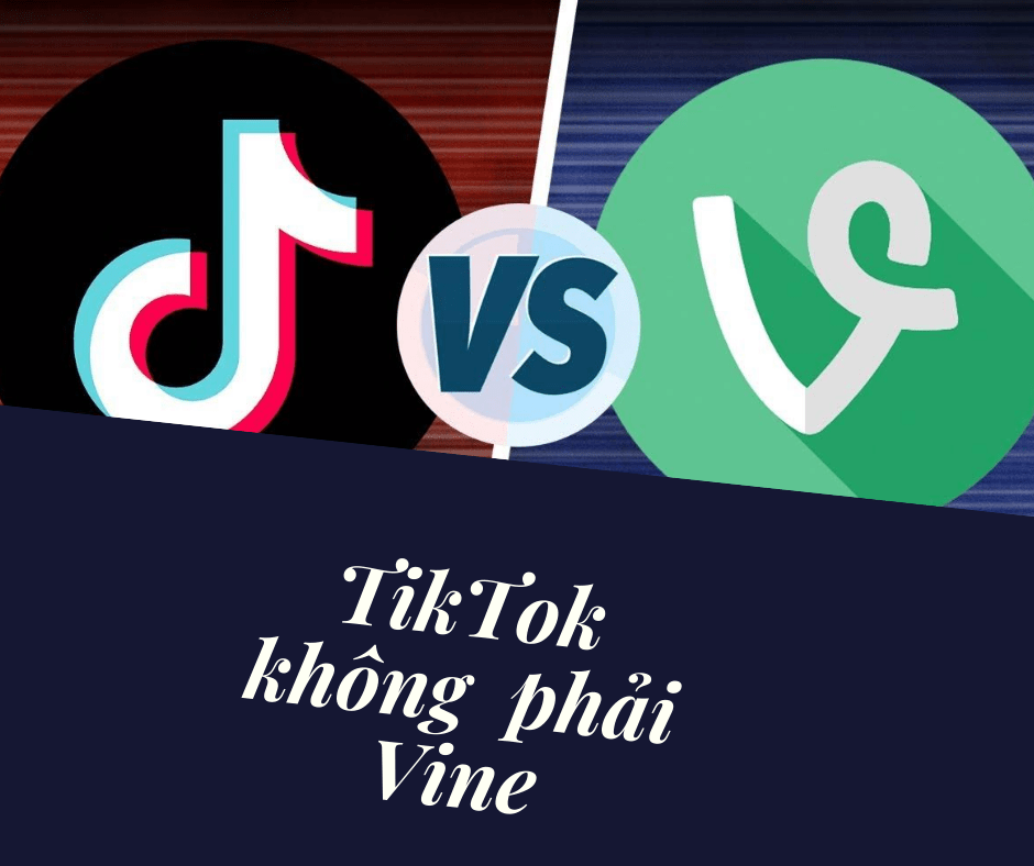tiktok-marketing-vs-vine